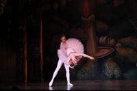 2010FA_Nutcracker_GrandPas_0017