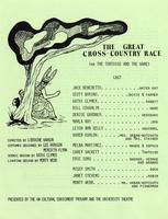 The Great Cross-Country Race