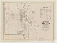 City map, Saratoga, Carbon County, Wyoming