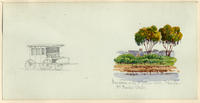 Mandarin, On The Saint John's River, Florida, Mrs. Beecher-Stowe
