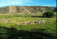 Overview Of The Seminoe Trading Post Excavation Site