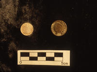 Gold Coins Found At Camp Payne Military Post Site