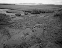 Overland Trail Ruts Cut Into Stone