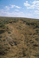 Oregon Trail Ruts At Prospect Hill In Natrona County, Wyoming