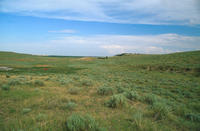 Oregon Trail Swales Near Ft. Laramie, Wyoming