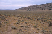 Oregon Trail Ruts Near Jeffery City, Wyoming