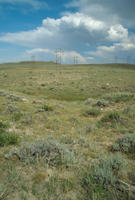 Oregon Trail Ruts In Converse County, Wyoming