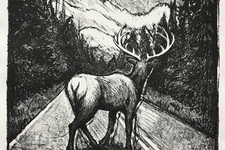 Charcoal illustration of a buck standing in the middle of a road