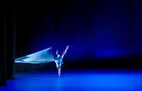 Oct 31, Nov 1-4: Fire and Ice & The Pink Blue